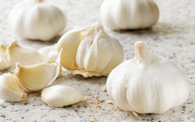 Garlic gets the girl: Forget aftershave - just eat garlic to attract women, study finds