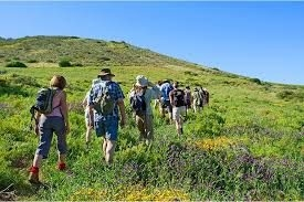 Spring hikes in Lebanon's blossoming nature